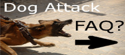 dog attack FAQ