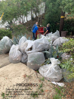 bags of trash collected on clean up day